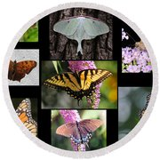 The Butterfly Collection Round Beach Towel