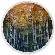 The Colors Of Fall II Round Beach Towel