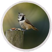The Crested Tit Round Beach Towel