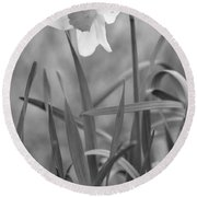 The Daffodil In Black-and-white Round Beach Towel