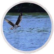 The Environmentalist Osprey Round Beach Towel