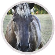 The Farmers Horse Round Beach Towel