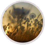 The Fire Of The Sun Round Beach Towel