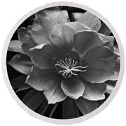 The Flower Of One Night Round Beach Towel