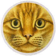 The French Orange Cat Round Beach Towel