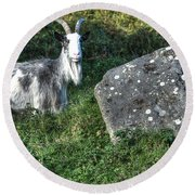 The Goat And The Stone Round Beach Towel