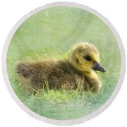 The Gosling Round Beach Towel
