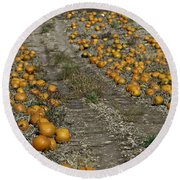 The Great Pumpkin Patch Trail Round Beach Towel