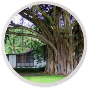 The House Beside The Banyan Tree Round Beach Towel