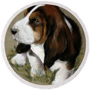The Little Basset Round Beach Towel by Mary Sparrow