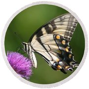 The Love Of Thistle Round Beach Towel