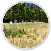 The Meadow Digital Art Round Beach Towel
