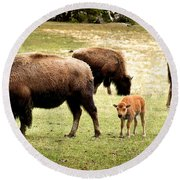 The Mighty Bison Round Beach Towel