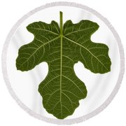 The Mission Fig Leaf Round Beach Towel