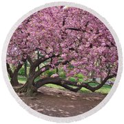 The Most Beautiful Cherry Tree Round Beach Towel