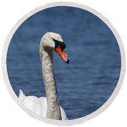 The Mute Swan Round Beach Towel