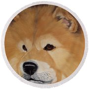 The Noble Chow Round Beach Towel