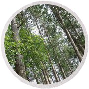 The Northwoods Round Beach Towel