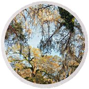 The Oaks Of City Park Round Beach Towel