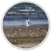 The Odd One Out V2 Round Beach Towel