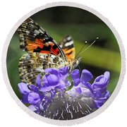 The Painted Lady Butterfly  Round Beach Towel