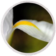 The Pose White Dutch Iris Flower  Round Beach Towel