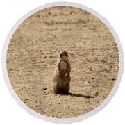 The Prairie Dog Round Beach Towel