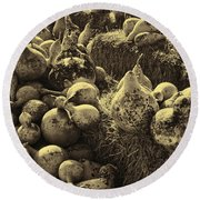 The Produce Of The Earth In Sepia Round Beach Towel
