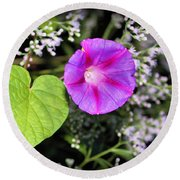 The Queen's Morning Glory Round Beach Towel