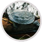 The Red Eared Slider Round Beach Towel