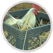 The Rooster That Laid A Golden Egg Round Beach Towel