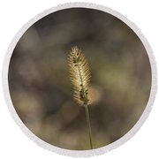 The Seeds Of Nature Round Beach Towel