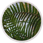 The Shade Of A Fern Round Beach Towel