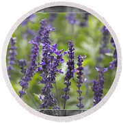 The Smell Of Lavender  Round Beach Towel