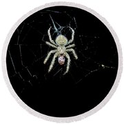 The Spider Round Beach Towel