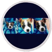 The Three Amigos Teacup Chihuahua Round Beach Towel