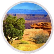 The Tree The Canyon And The Mountains Round Beach Towel