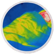 Thermogram Of A Child Sleeping Round Beach Towel