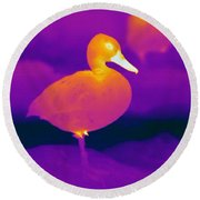 Thermogram Of A Cinnamon Teal Duck Round Beach Towel