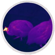 Thermogram Of Guineafowl Round Beach Towel