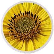 Thinleaf Sunflower Round Beach Towel