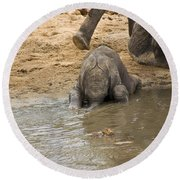 Thirsty Young Elephant Round Beach Towel