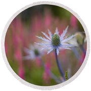 Thistle Dream Grove Round Beach Towel