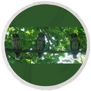 Three Barred Owls Round Beach Towel
