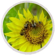 Three Bees Hunkering Down Round Beach Towel