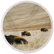 Three Bison Round Beach Towel