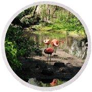 Three Flamingos Round Beach Towel