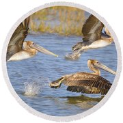 Three Pelicans Taking Off Round Beach Towel