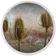 Three Prickly Teasels Round Beach Towel