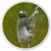 Three-toed Sloth Climbing Round Beach Towel by Heiko Koehrer-Wagner